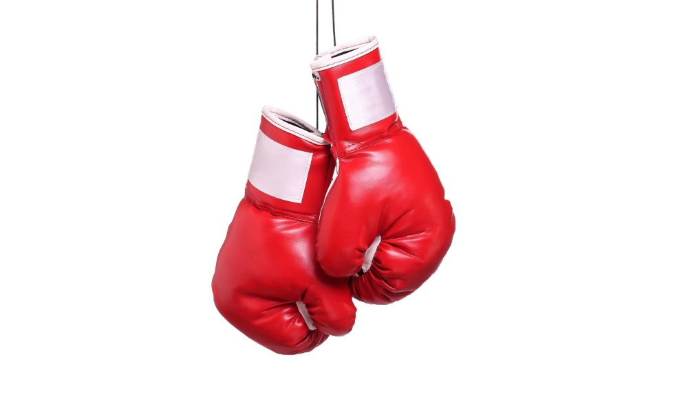 Best Boxing Gloves Under $100